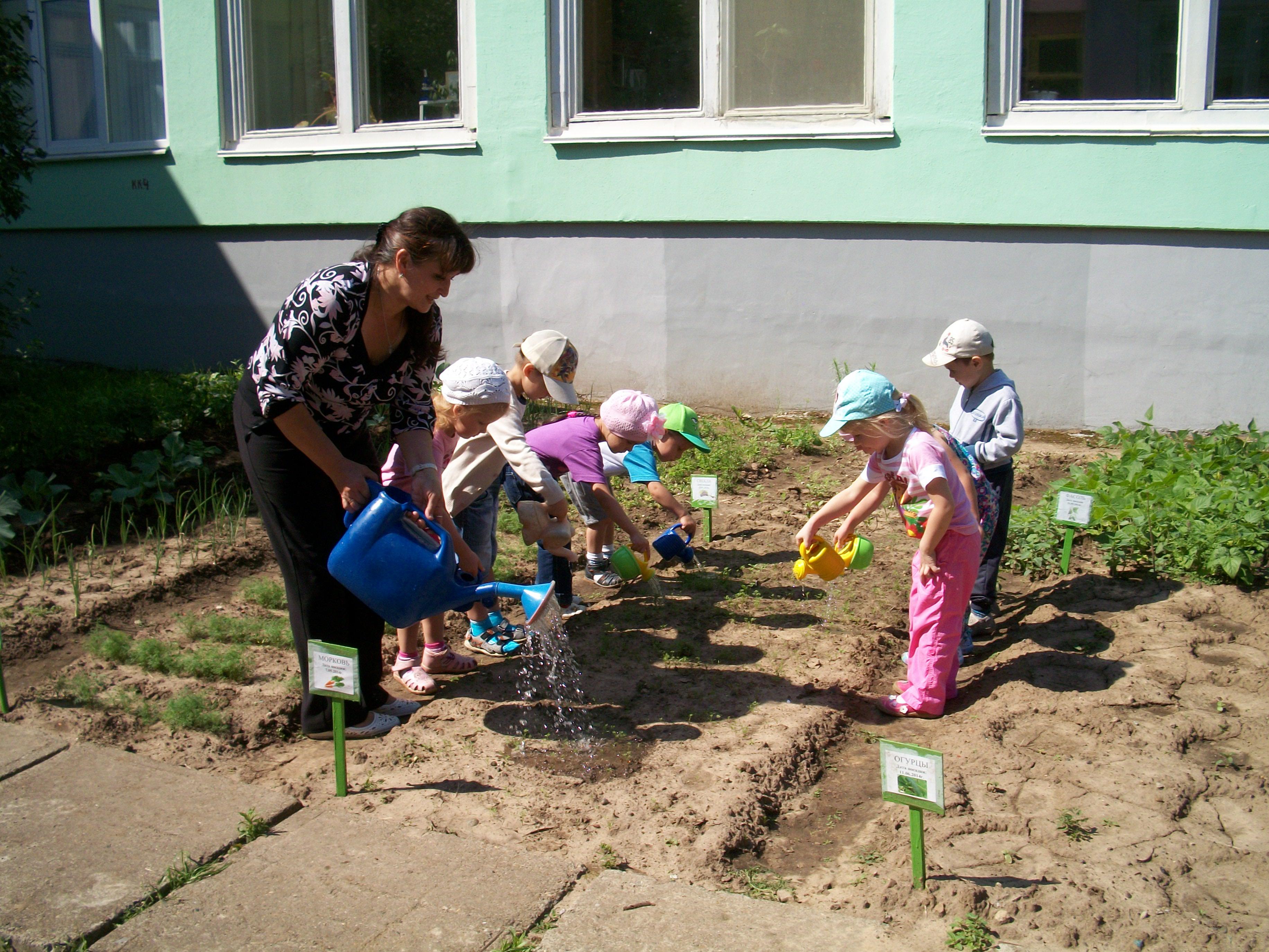 Фото детей на грядках
